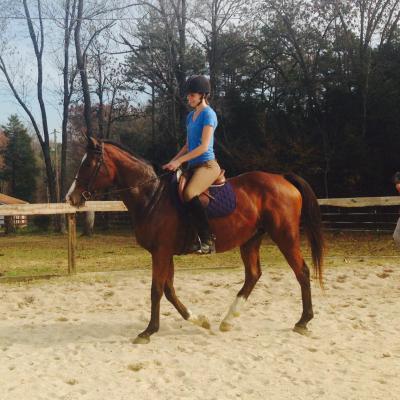 Jump For Joy Equestrian Center Llc Concord Nc