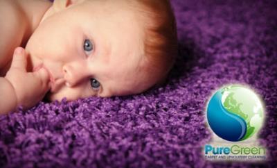 Puregreen Carpet Cleaning New York Ny