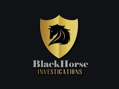 BHinvestigation