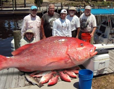 Mexico beach charters port saint joe fl for Fishing charters mexico beach fl