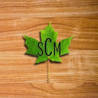SMConstruction