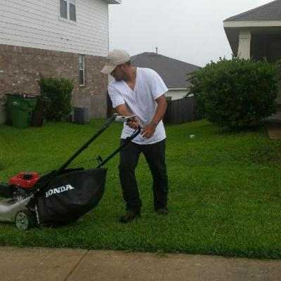loyalty lawn care